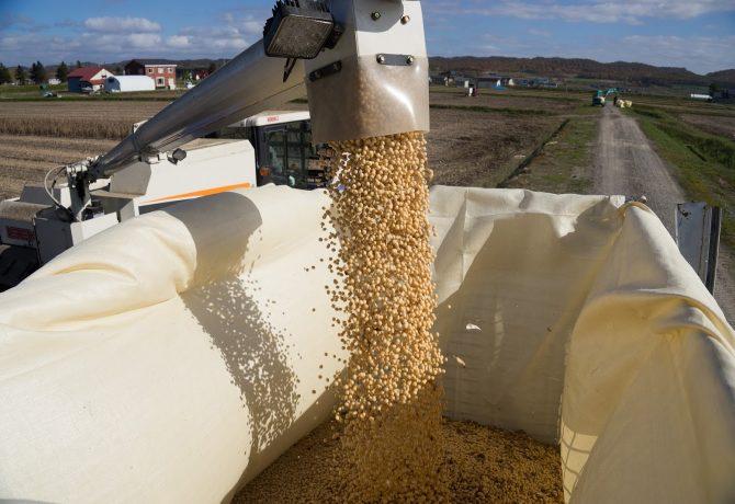 大豆収穫 鉄コンテナ スチールコンテナ コンバイン