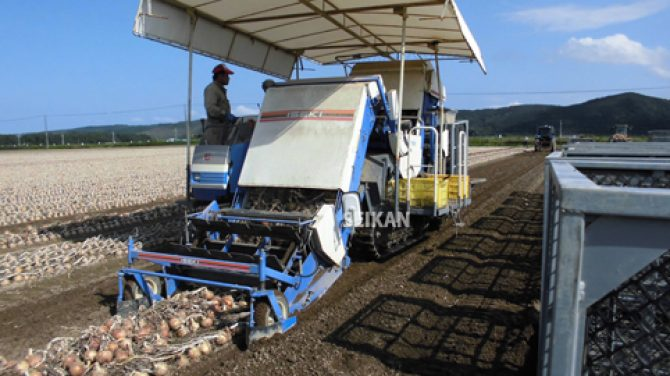 農業用鉄コンテナ 玉葱スチールコンテナ 機械収穫