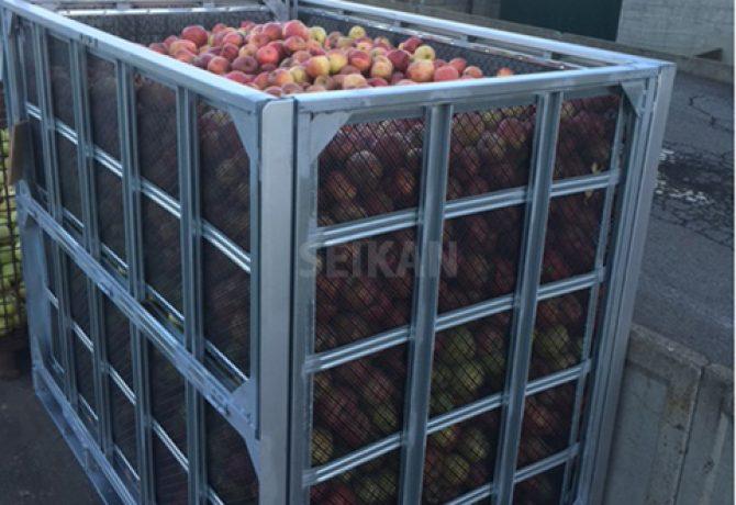 りんご 鉄コンテナ セイカン
