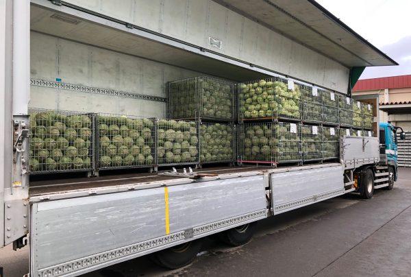 業務用加工野菜の輸送にも多く利用