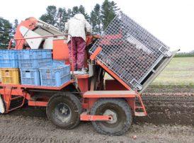メッシュコンテナ 農業用鉄コンテナ 玉葱収穫  セイカン たまねぎ