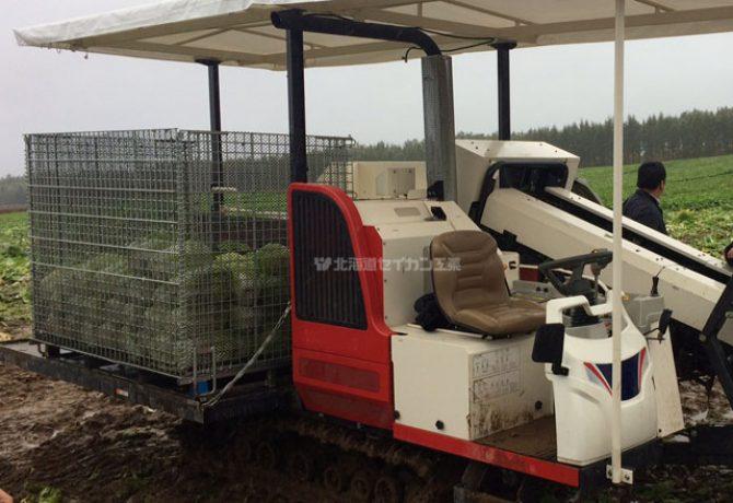 白菜 鉄コンテナ 収穫機 メッシュコンテナ